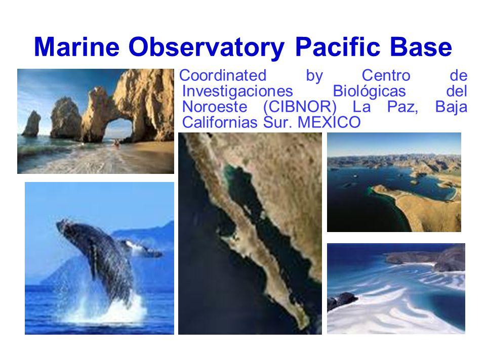 Marine Observatory Pacific Base Coordinated by Centro de Investigaciones Biológicas del Noroeste (CIBNOR) La Paz, Baja Californias Sur.