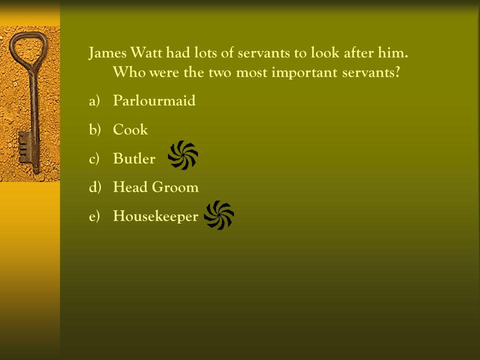 James Watt had lots of servants to look after him.