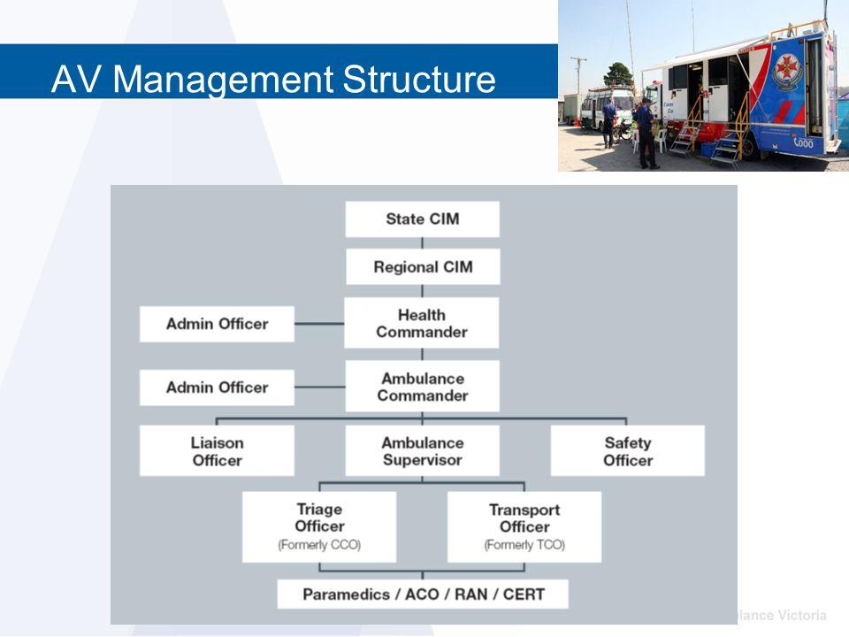 AV Management Structure