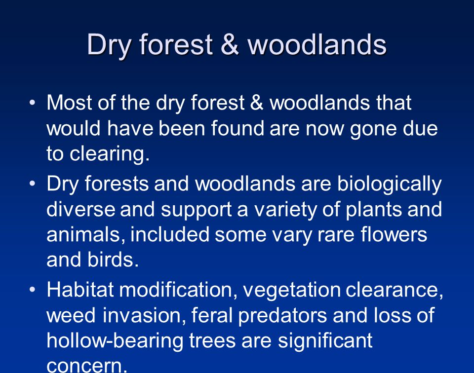 Dry forest & woodlands Most of the dry forest & woodlands that would have been found are now gone due to clearing.