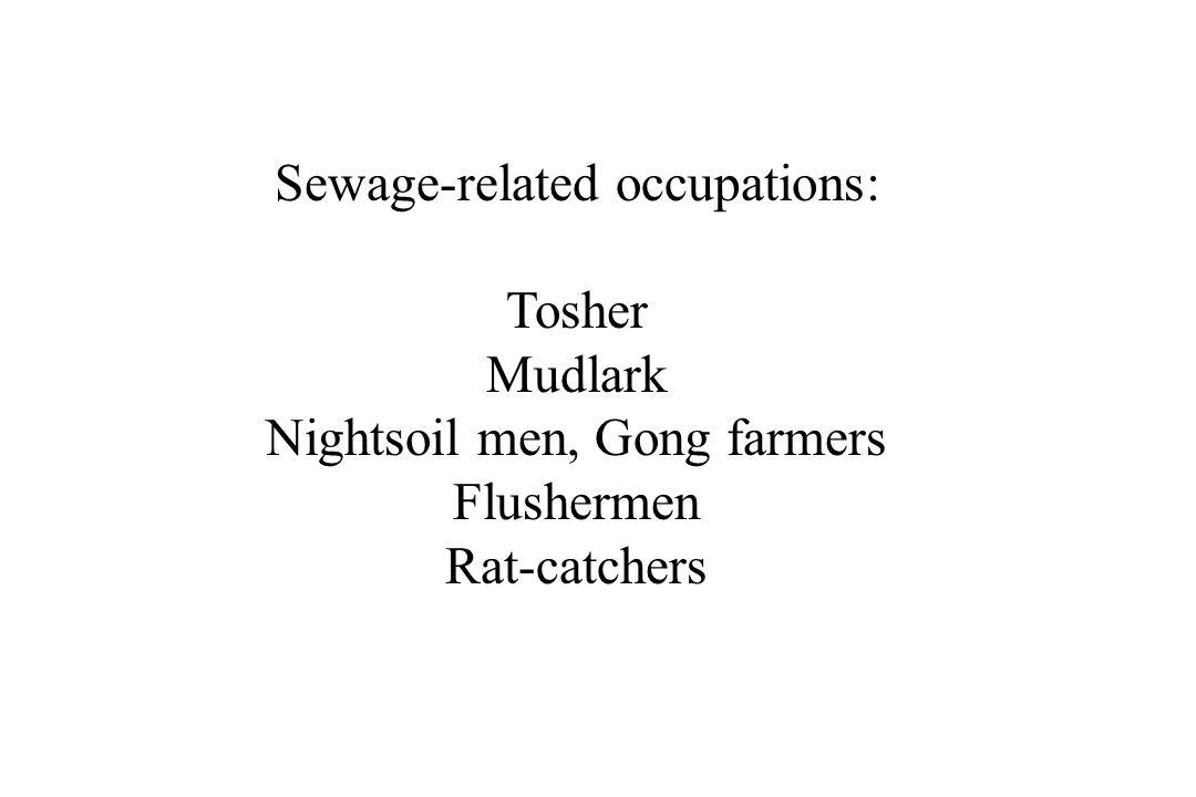Sewage-related occupations: Tosher Mudlark Nightsoil men, Gong farmers Flushermen Rat-catchers