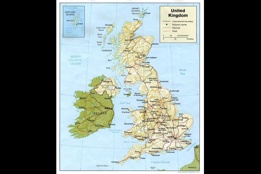 Irish Potato Famine One variety of potato grown… Potato blight wipes out 85%.....