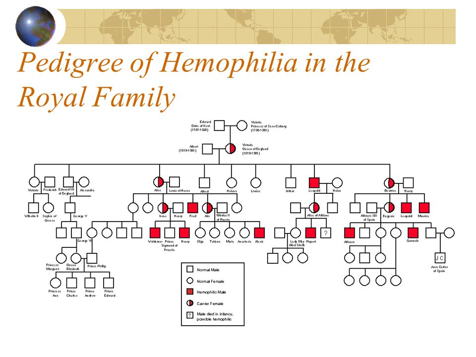 Pedigree of Hemophilia in the Royal Family