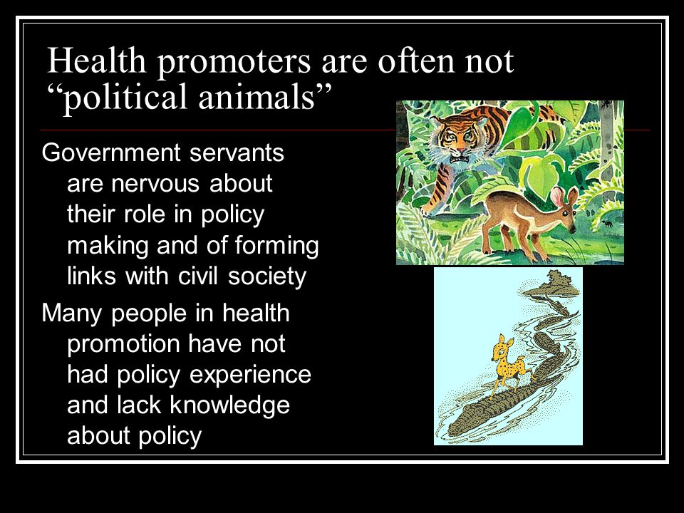 "Health promoters are often not ""political animals"" Government servants are nervous about their role in policy making and of forming links with civil s"