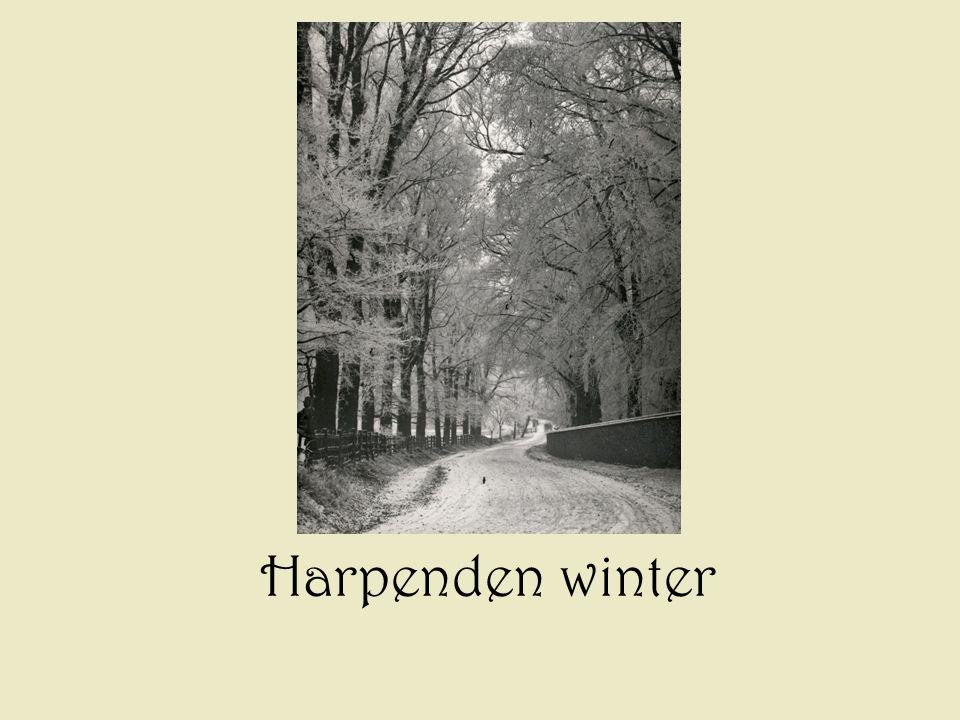 Harpenden winter