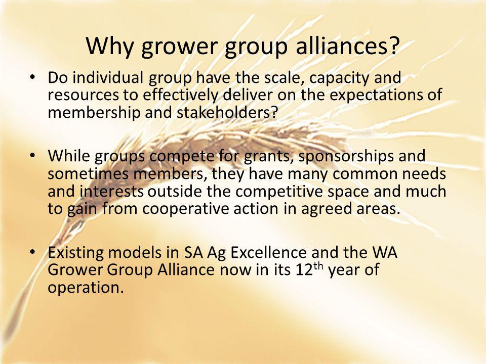 VGGA members & industry coverage