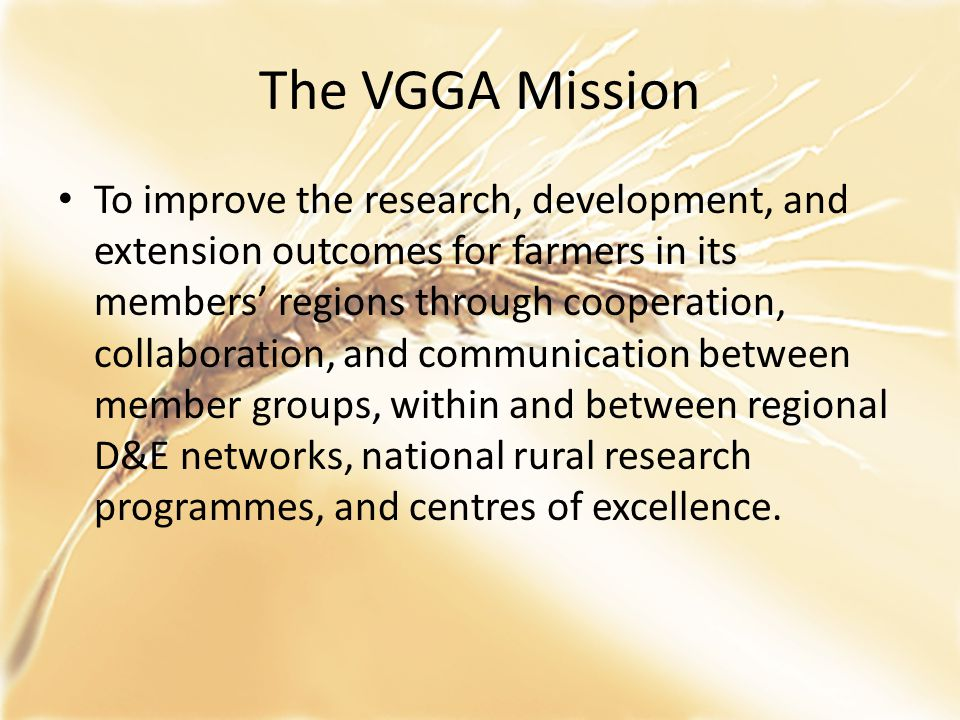 VGGA now o Incorporated association of 7 member groups with independent chair and part-time coordinator o Guiding principles – no competition for funds with member groups, equal say regardless of size (see notes for details), facilitate cooperation between members.