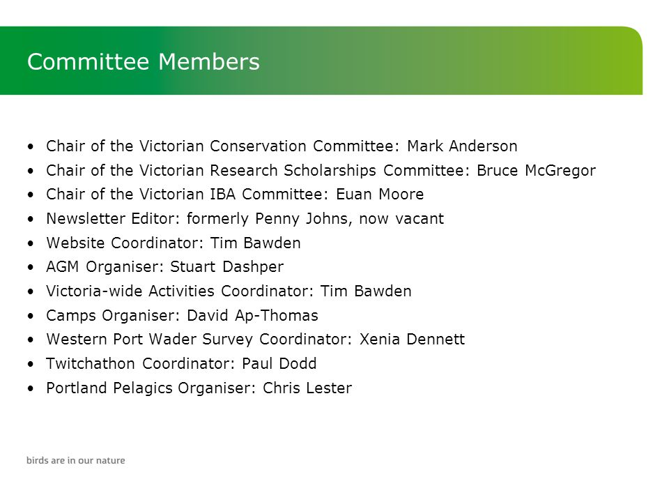 Committee Members If other Victoria-wide interests are identified, the Committee may accept nominees from relevant sub-committees as members Very important that there is state-wide representation on the Committee –Therefore, representatives from each of the Victorian branches are encouraged to join the BirdLife Victorian Committee and attend meetings as regularly as possible –Where branches are a considerable distance from Melbourne, representatives may participate in meetings using electronic means, such as teleconferencing