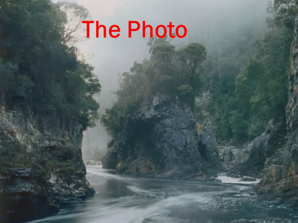 The Photo