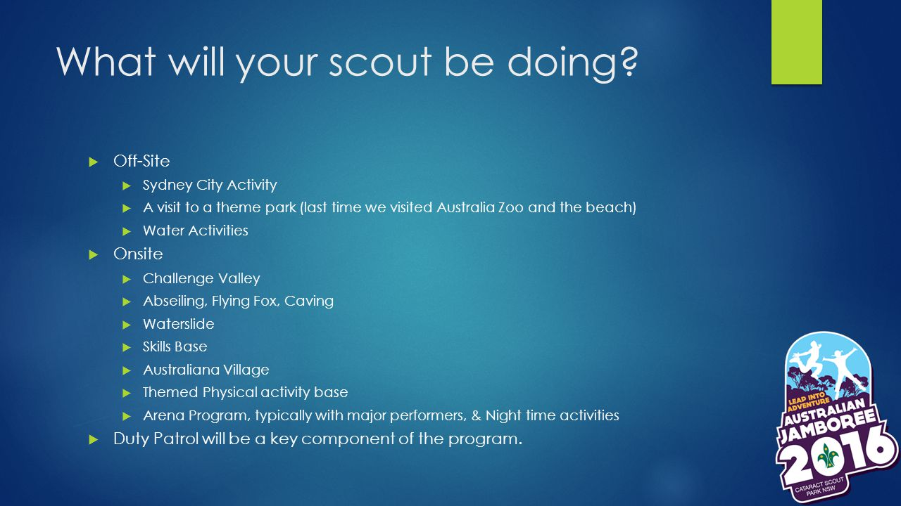 What will your scout be doing.