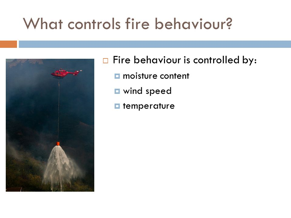 What controls fire behaviour?  Fire behaviour is controlled by:  moisture content  wind speed  temperature