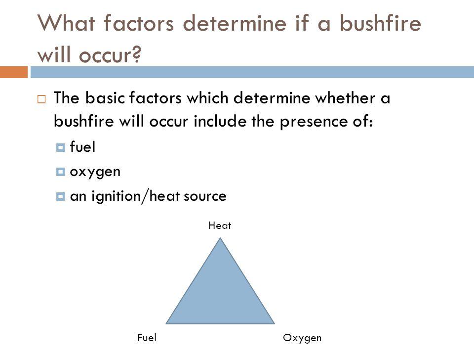 What factors determine if a bushfire will occur.