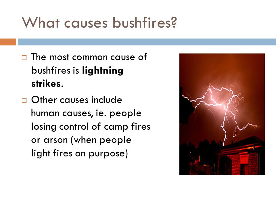What causes bushfires?  The most common cause of bushfires is lightning strikes.  Other causes include human causes, ie. people losing control of ca