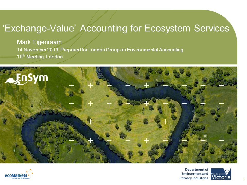 ASSET Services SEEA Ecosystem Accounts Services Victorian approach to Ecosystem Accounts
