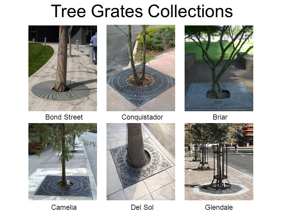 Tree Grates Collections Bond Street Del SolGlendale Briar Camelia Conquistador