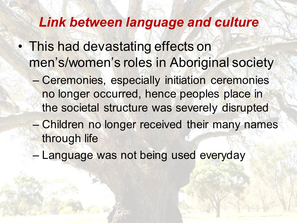 Link between language and culture Language and cultural practises were forbidden soon after European arrival If caught, you were punished Families separated, never see them again 'Half-caste Act', those with one European father/mother were forbidden to stay with those who have two Aboriginal parents, it was referred to as 'Softening the dying pillow', in affect attempted genocide, black must become white