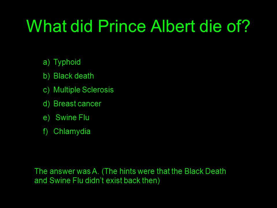 What did Prince Albert die of.