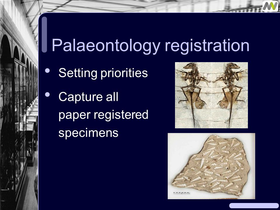 Palaeontology registration Setting priorities Capture all paper registered specimens