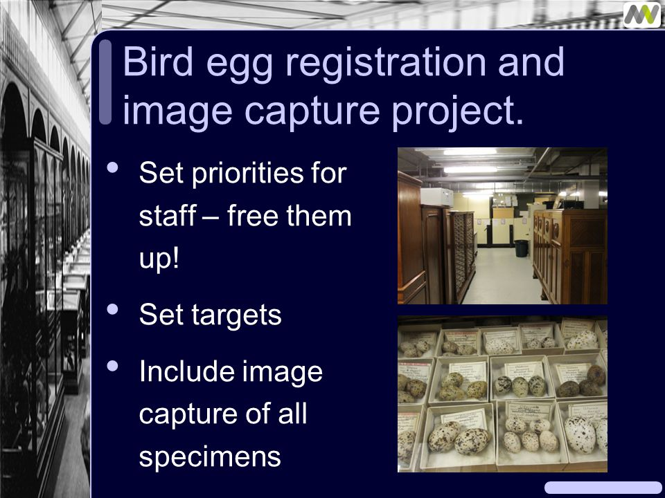 Bird egg registration and image capture project. Set priorities for staff – free them up.