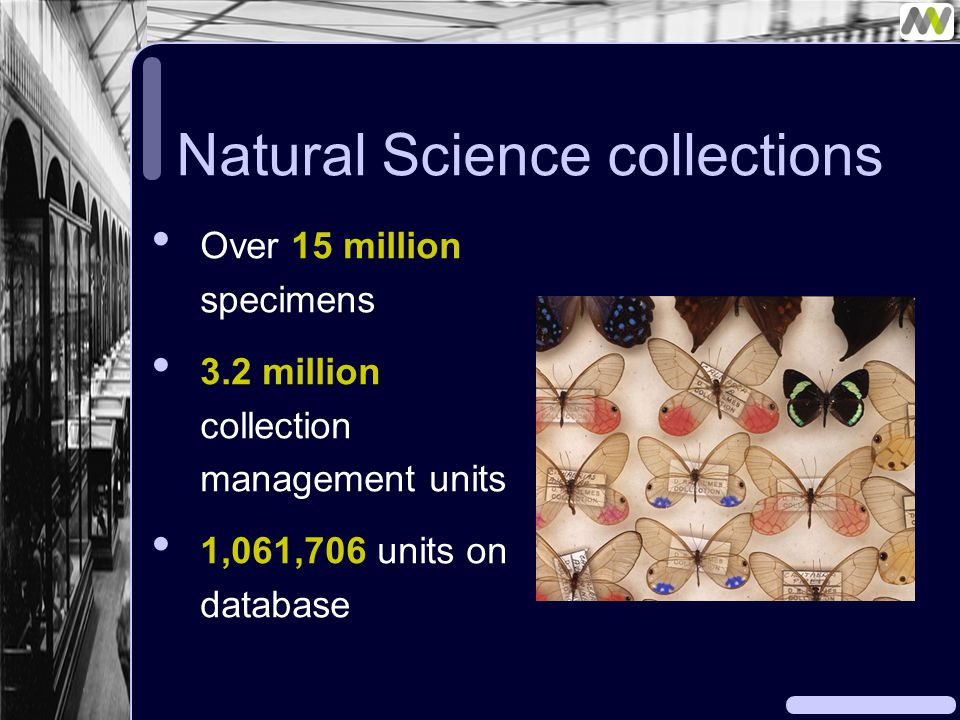 Natural Science collections Over 15 million specimens 3.2 million collection management units 1,061,706 units on database