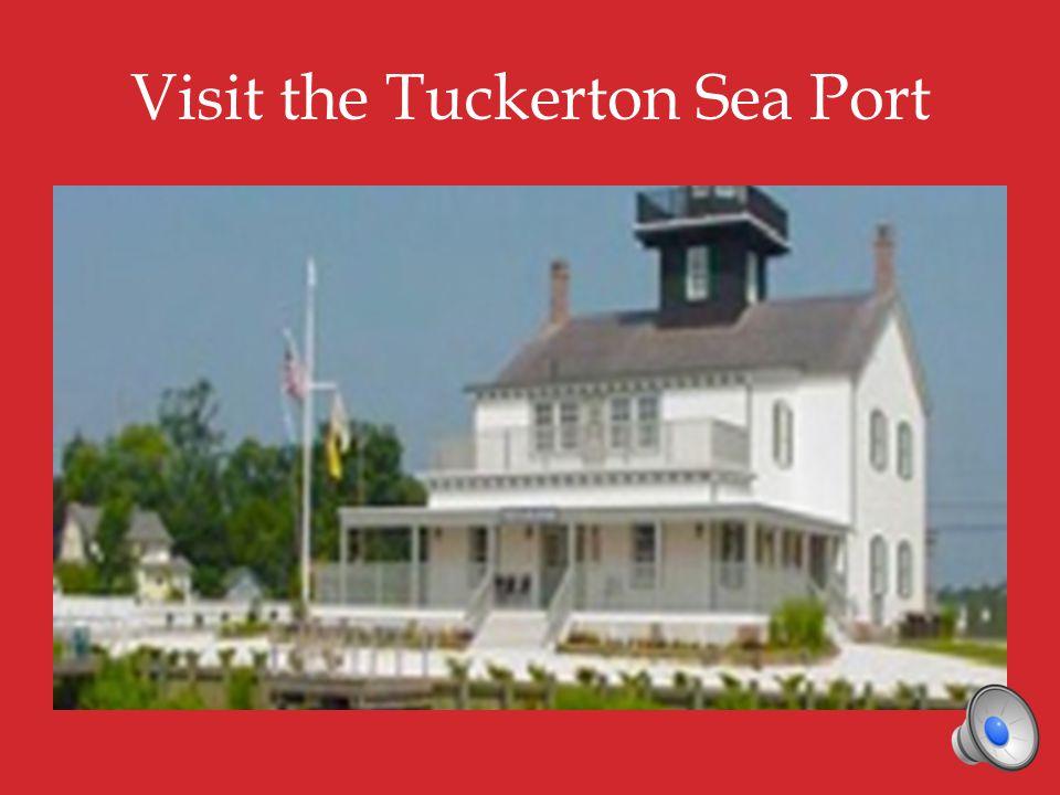 Visit the Tuckerton Sea Port