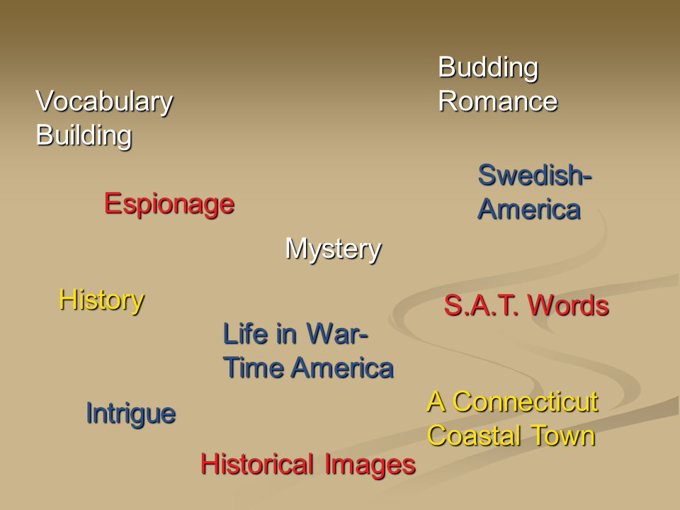 Intrigue Espionage History Vocabulary Building Life in War- Time America Swedish- America A Connecticut Coastal Town Mystery S.A.T.