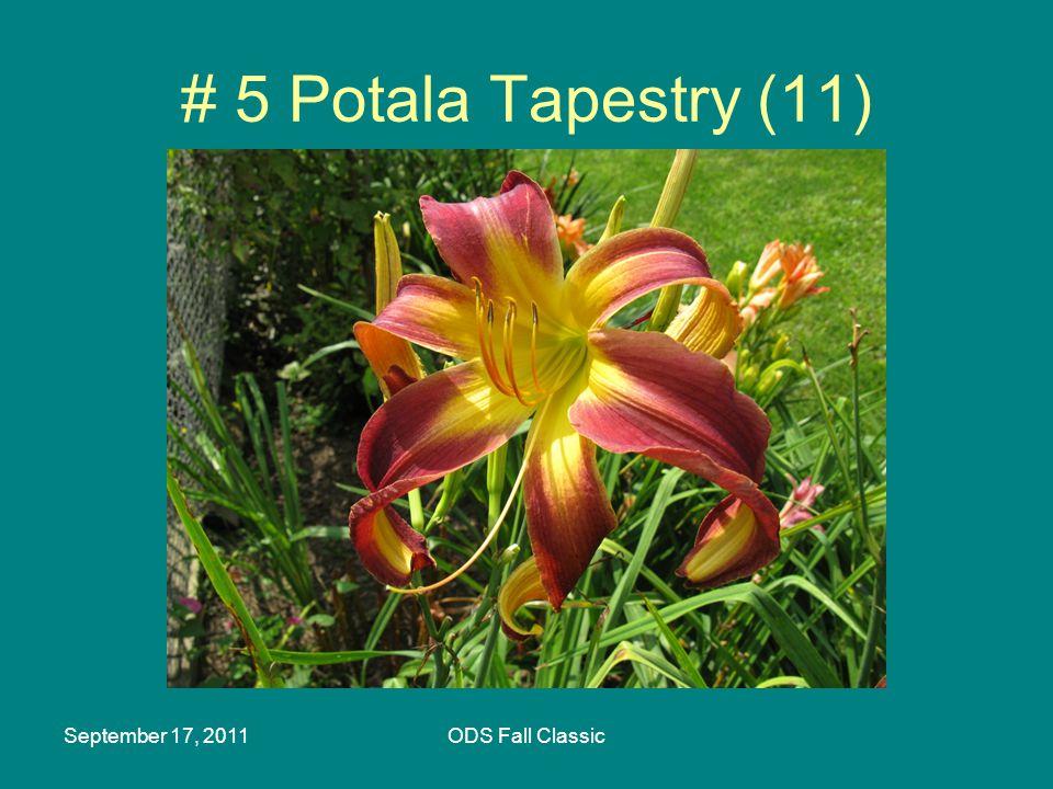 September 17, 2011ODS Fall Classic # 5 Potala Tapestry (11)
