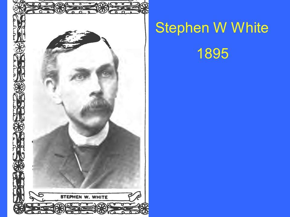 Stephen W White 1895