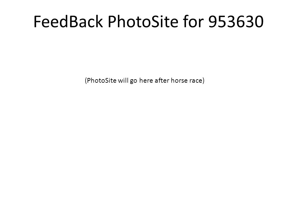 FeedBack PhotoSite for 953630 (PhotoSite will go here after horse race)