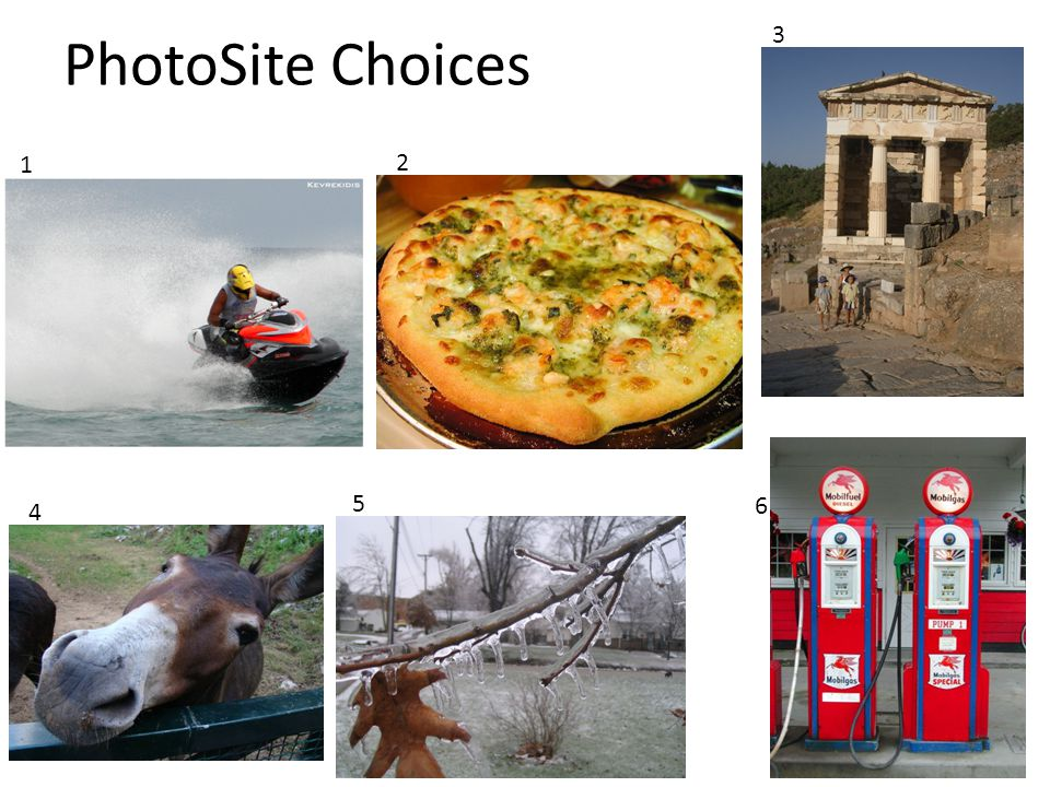 PhotoSite Choices 1 2 3 4 5 6