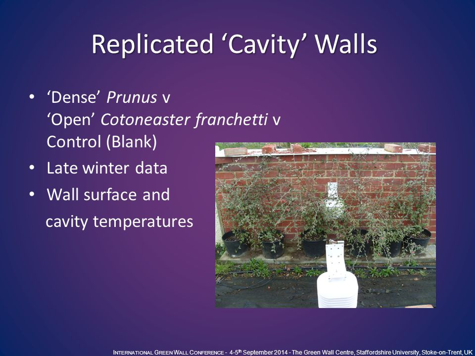 I NTERNATIONAL G REEN W ALL C ONFERENCE - 4-5 th September 2014 - The Green Wall Centre, Staffordshire University, Stoke-on-Trent, UK Replicated 'Cavity' Walls 'Dense' Prunus v 'Open' Cotoneaster franchetti v Control (Blank) Late winter data Wall surface and cavity temperatures
