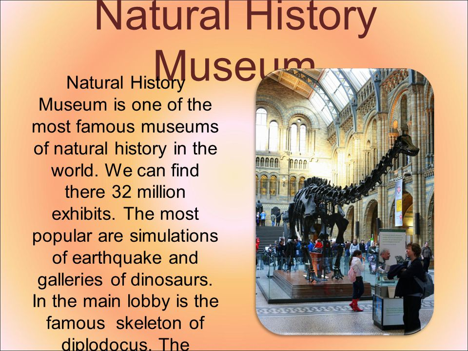 Natural History Museum Natural History Museum is one of the most famous museums of natural history in the world. We can find there 32 million exhibits