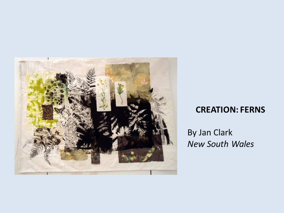 CREATION: FERNS By Jan Clark New South Wales