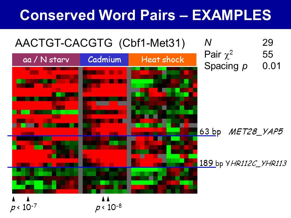 Conserved Word Pairs – EXAMPLES aa / N starvCadmiumHeat shock AACTGT-CACGTG (Cbf1-Met31) N 29 Pair  2 55 Spacing p0.01 189 bp YHR112C_YHR113 63 bp MET28_YAP5 p < 10 -8 p < 10 -7