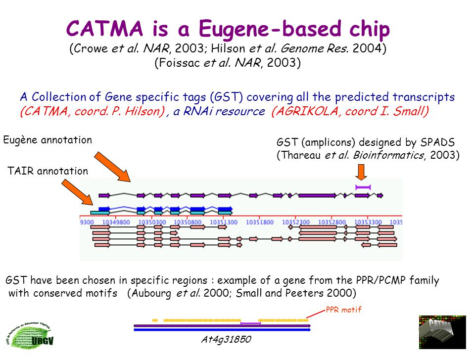 CATMA is a Eugene-based chip (Crowe et al.NAR, 2003; Hilson et al.