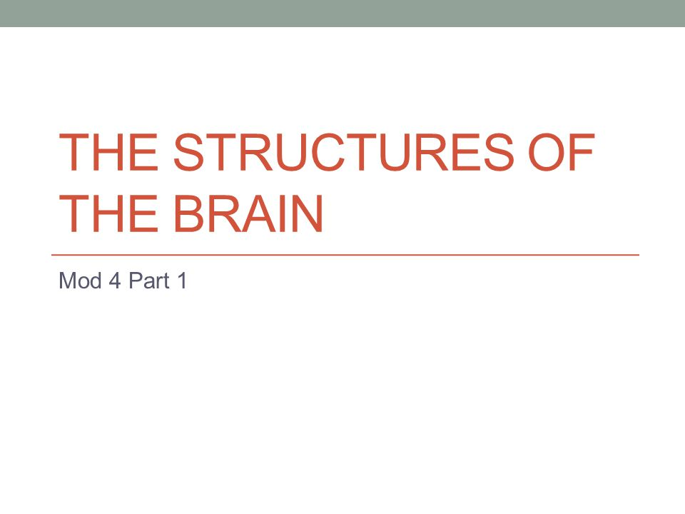 THE STRUCTURES OF THE BRAIN Mod 4 Part 1