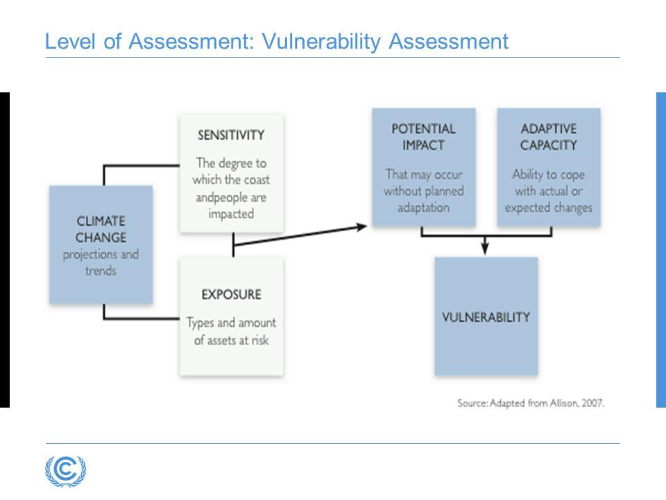 Level of Assessment: Vulnerability Assessment