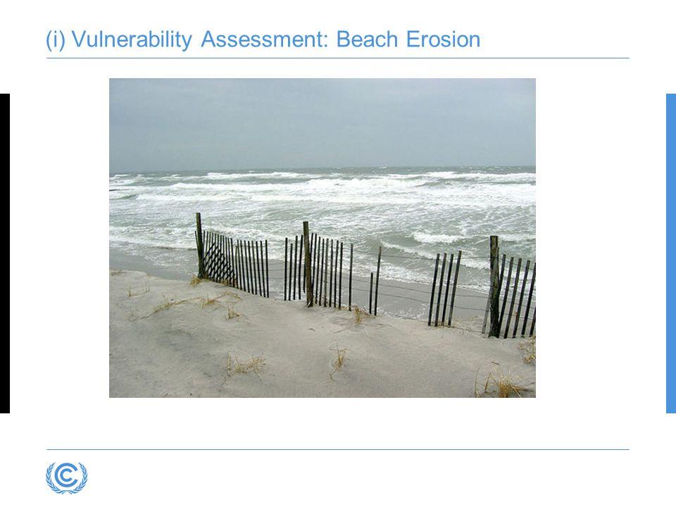 (i) Vulnerability Assessment: Beach Erosion