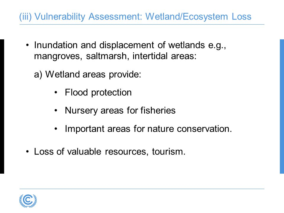 (iii) Vulnerability Assessment: Wetland/Ecosystem Loss Inundation and displacement of wetlands e.g., mangroves, saltmarsh, intertidal areas: a)Wetland areas provide: Flood protection Nursery areas for fisheries Important areas for nature conservation.