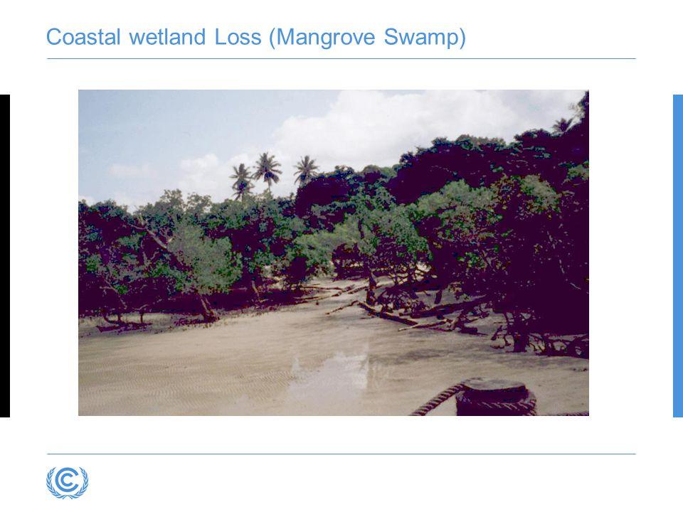 Coastal wetland Loss (Mangrove Swamp)