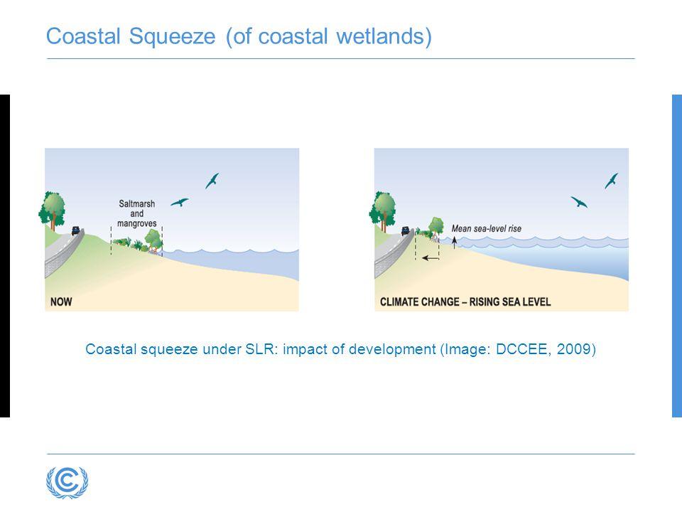Coastal Squeeze (of coastal wetlands) Coastal squeeze under SLR: impact of development (Image: DCCEE, 2009)