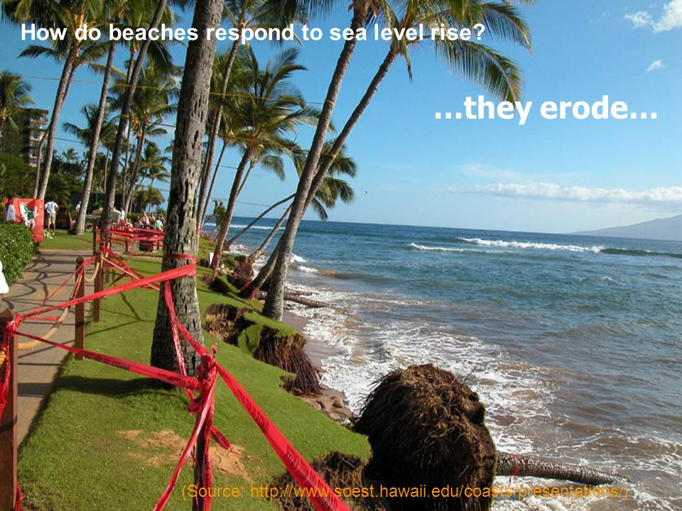 How do beaches respond to sea level rise? …they erode… (Source: http://www.soest.hawaii.edu/coasts/presentations /)