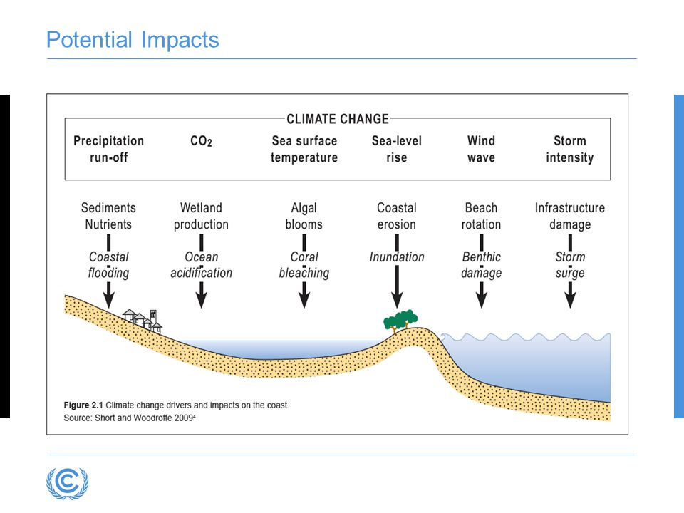 Limitations of the Bruun Rule Only describes one of the processes affecting sandy beaches Indirect effect of mean SLR: a)Estuaries and inlets maintain equilibrium b)Act as major sinks c)Sand eroded from adjacent coast d)Increased erosion rates.