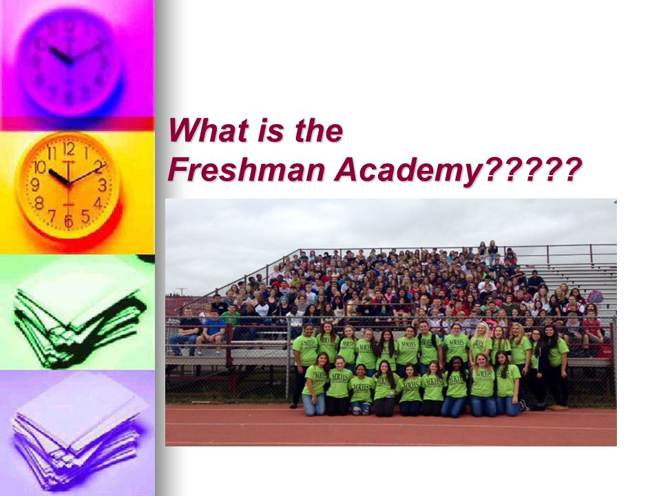 What is the Freshman Academy?????
