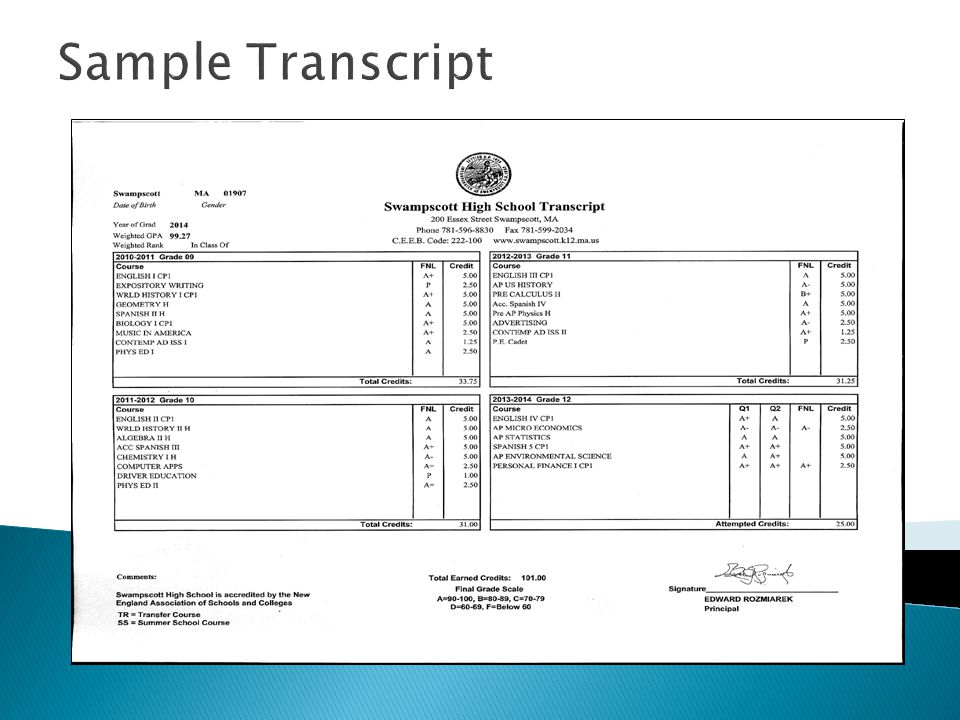 Sample Transcript