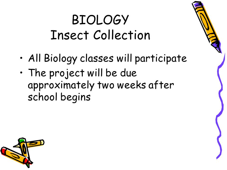 BIOLOGY Insect Collection All Biology classes will participate The project will be due approximately two weeks after school begins