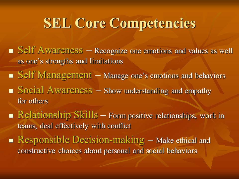 SEL Core Competencies Self Awareness – Recognize one emotions and values as well as one's strengths and limitations Self Awareness – Recognize one emotions and values as well as one's strengths and limitations Self Management – Manage one's emotions and behaviors Self Management – Manage one's emotions and behaviors Social Awareness – Show understanding and empathy for others Social Awareness – Show understanding and empathy for others Relationship Skills – Form positive relationships, work in teams, deal effectively with conflict Relationship Skills – Form positive relationships, work in teams, deal effectively with conflict Responsible Decision-making – Make ethical and constructive choices about personal and social behaviors Responsible Decision-making – Make ethical and constructive choices about personal and social behaviors