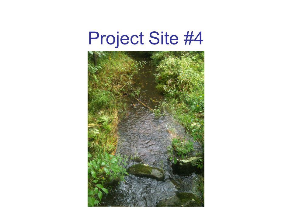 Project Slide #5