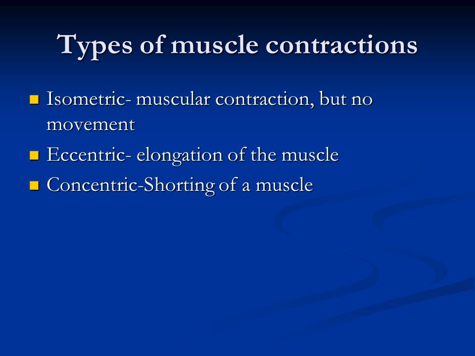 Types of muscle contractions Isometric- muscular contraction, but no movement Isometric- muscular contraction, but no movement Eccentric- elongation of the muscle Eccentric- elongation of the muscle Concentric-Shorting of a muscle Concentric-Shorting of a muscle