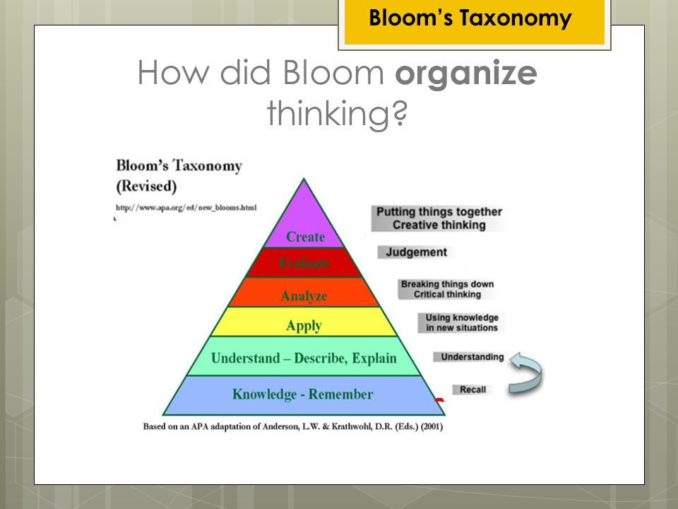 How did Bloom organize thinking